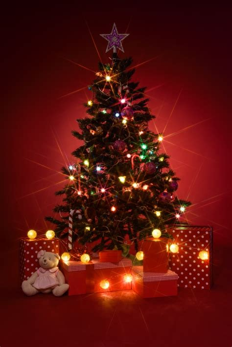 roter weihnachtsbaum tree with gifts on background photo free