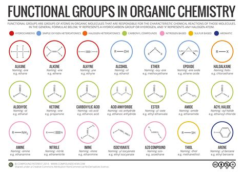 functional groups in organic chemistry infographic