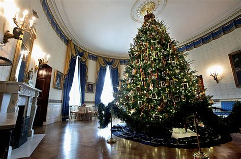 tree shop niagara falls blvd white house decorated for rainforest islands ferry