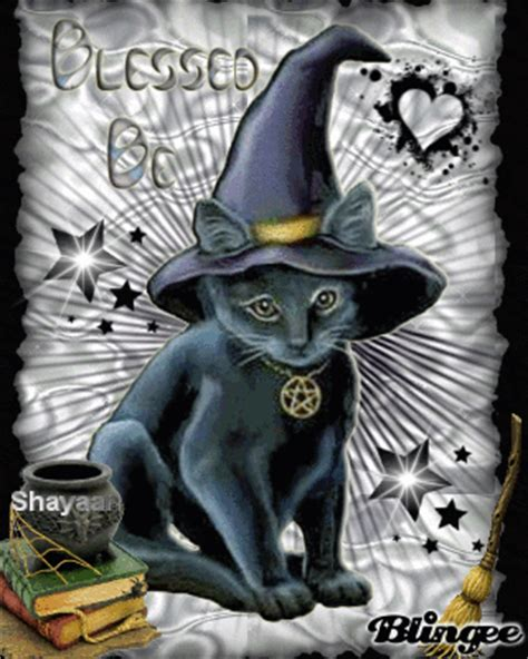 witches cat sweet witch cat picture 95671242 blingee