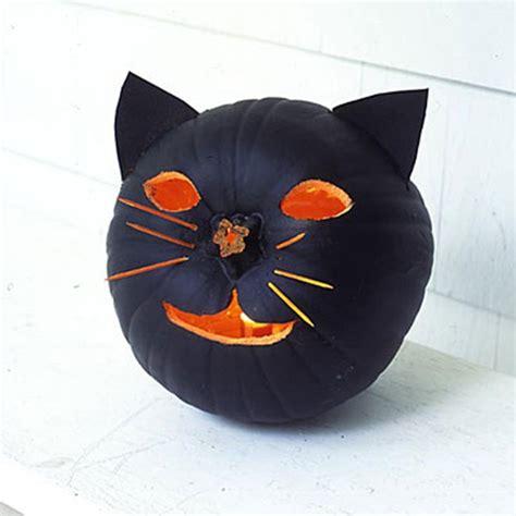 ideas black cat howl o ween black cat ideas irresistible pets