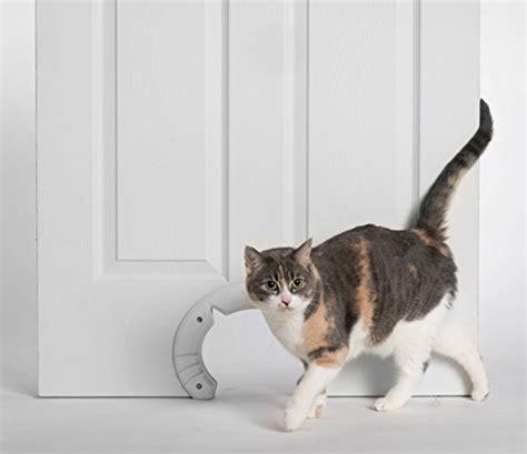 large cat doors interior doors built in cat door for medium large cats fits interior