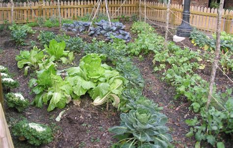 how to make home vegetable garden various plants diy backyard vegetable garden with wooden