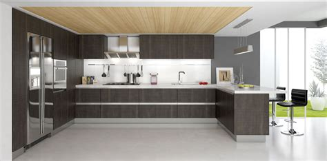 buy modern kitchen cabinets modern kitchen cabinets design for modern home