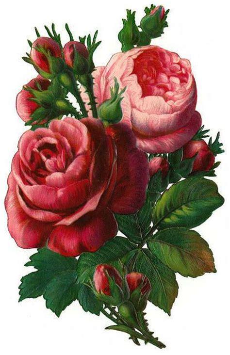 decoupage roses vintage clip vintage decoupage floral