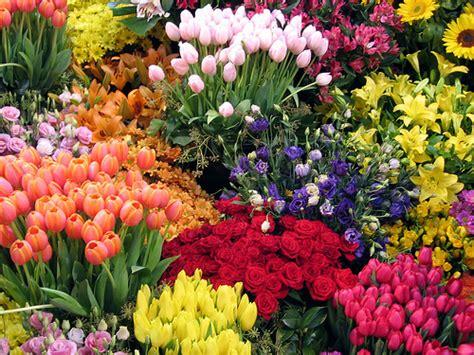 flowers gardens pictures flower garden pictures pictures of beautiful flower gardens