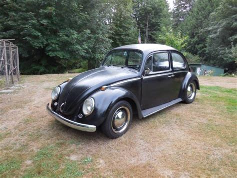 Volkswagen Classic Beetle For Sale by Classic Volkswagen Beetle For Sale Buy Classic Volks