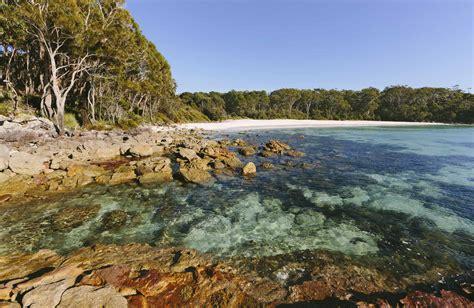 park nsw jervis bay national park nsw national parks