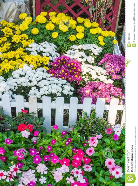 front yard flower garden beautiful flower garden stock photo image 51019405