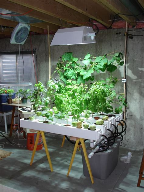 indoor hydroponic vegetable garden pin by jeff edwards on hydroponic gardening