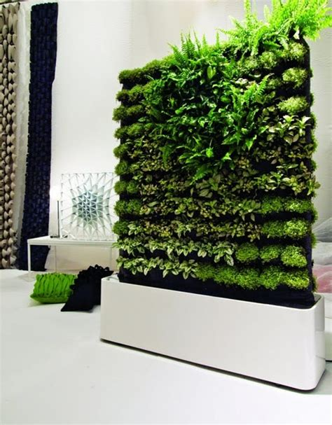 indoor wall garden indoor garden wall garden inspiration