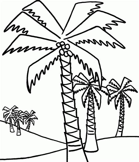tree colouring in pages palm tree coloring pages to print coloring home