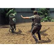 Chris Pratt Plays Raptor Whisperer In The Latest Jurassic