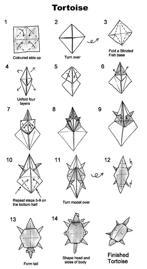 origami turtle diagram 1000 images about dino origami on money