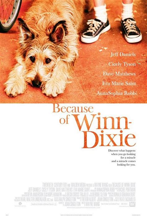 pictures of the book because of winn dixie 301 moved permanently
