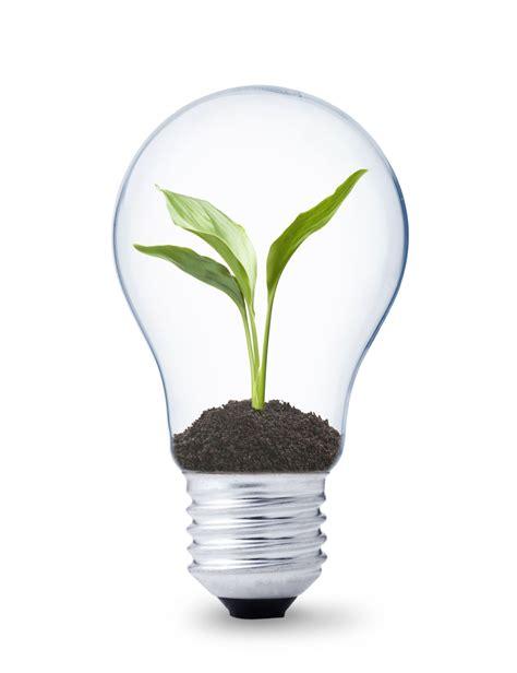 eco lights led led s green eco light light emitting diodes led