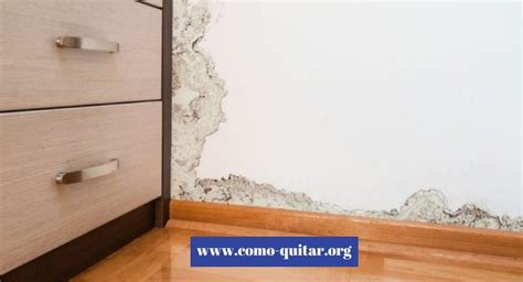 humedad paredes interiores como quitar la condensaci 243 n de las paredes soluciones
