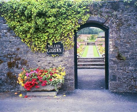 walled garden login pando how ecosystems became the new walled gardens