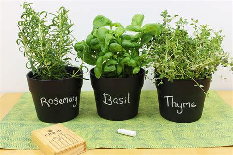chalkboard paint homebase diy chalkboard paint herb pots shelley makes
