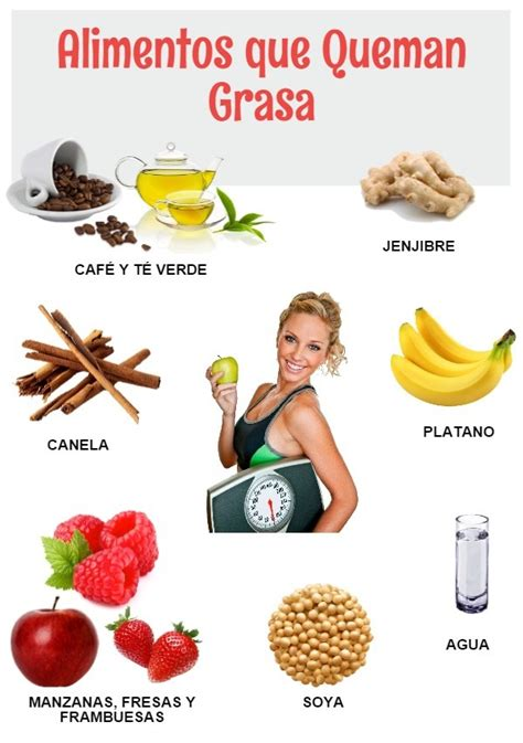 alimentos para eliminar grasa del abdomen alimentos adelgazantes para quemar grasa hoy aprend 237 salud