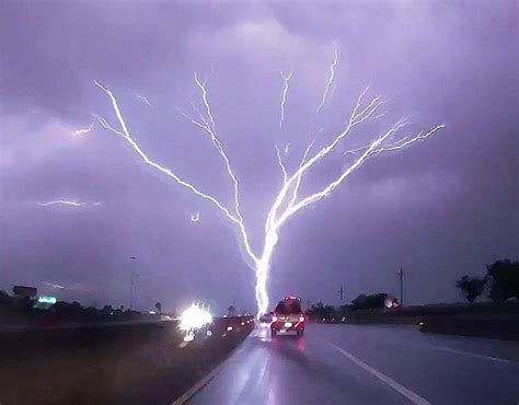lighting the tree 1000 images about lightning on thunder and