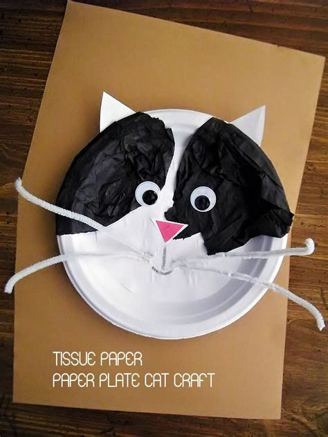 cat paper plate craft tissue paper on paper plate cat craft paper plates