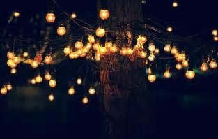 summer tree lights tree lights on