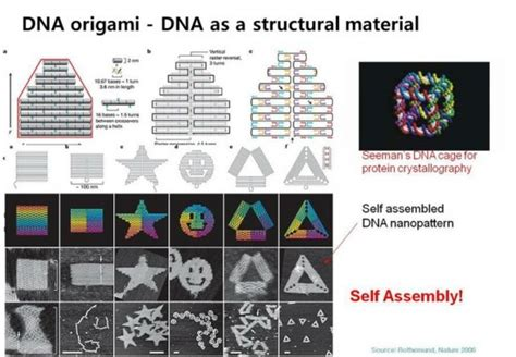 dna origami applications 10 tech concepts that took a leap in 2010 realitypod