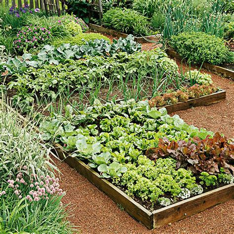 garden vegetable planning your vegetable garden