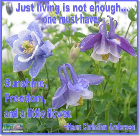 quotes on gardens and flowers power flowers our favorite gardening quotes