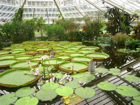 file national botanic garden of belgium meise img 4379
