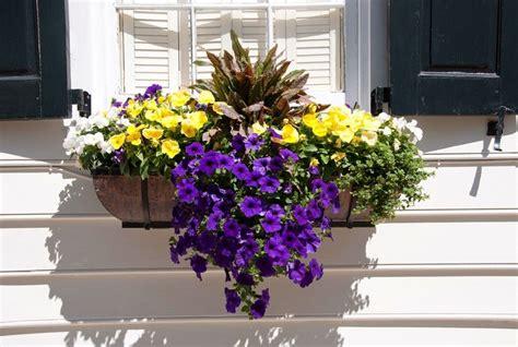 Blumenkübel Bepflanzen Vorschläge by P 225 Tio Das Flores Jardineiras Em Casa Jardins Integrados