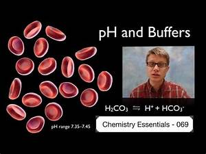 pH and Buffers - YouTube