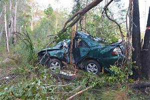 Woman survives crash after hitting tree at high speed ...