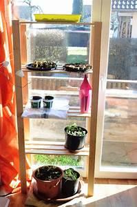 Garten Was Tun Im März : es ist m rz was gibt es im garten im m rz zu tun haus und beet ~ Markanthonyermac.com Haus und Dekorationen