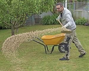 Holzasche Im Garten Verwenden : moos im rasen erfolgreich bek mpfen rasen g rten und moos ~ Markanthonyermac.com Haus und Dekorationen