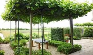 Baum Für Schattigen Vorgarten : dakplataan constructie de kim hekwerk tuin pinterest gartenz une sch ne g rten und g rten ~ Markanthonyermac.com Haus und Dekorationen
