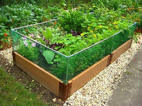 10 Easy Pieces Humane Ways To Outwit Varmints Gardenista