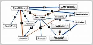 Mental Modeler - Fuzzy Logic Cognitive Mapping