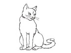 dessin chat de