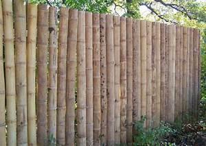 Sichtschutzzaun Bambus Holz : bambus sichtschutz sch n und ko freundlich ~ Markanthonyermac.com Haus und Dekorationen