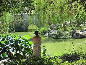 Gartengestaltung Feng Shui : gartengestaltung nach dem feng shui bagua ~ Markanthonyermac.com Haus und Dekorationen