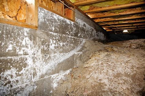 The Importance Of Crawl Space Mold Removal In Long How To Do Laminate Flooring Cost Calculator Spacers Real Hardwood Floors Vs Measure For Wood Starting Cleaners Slate