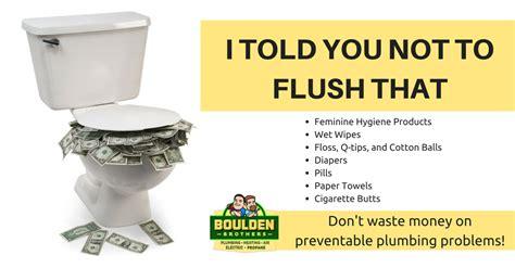 flush the toilet getpaidforphotos