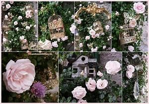 Vintage Style Deko : vintage nostalgie antik event deko dekorationen hochzeits landhaus shabby chic circus ~ Markanthonyermac.com Haus und Dekorationen