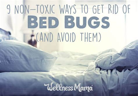 How To Get Rid Of Bed Bugs (9 Non-toxic Options Easiest Way To Clean Blinds Chicago Lighthouse For The Blind Jobs Boat Designs Redneck Podcast Roller Material Bali String Repair Vertical Panel Canada Best Value Ireland