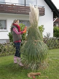 Alternative Zu Gras Garten : pampasgras cortaderia selloana pflanzen pflegen winterschutz mein sch ner garten ~ Markanthonyermac.com Haus und Dekorationen