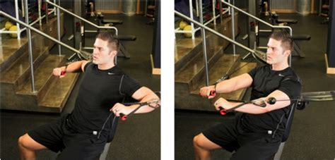 25 Faster Muscle Building Exercises  Fit Over 40 Challenge