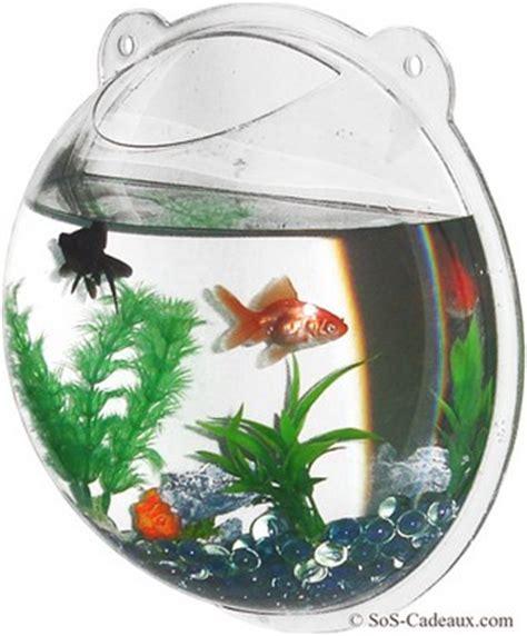 achat aquarium montpellier