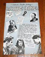 1000+ images about WHITE ROSE on Pinterest | Munich ...